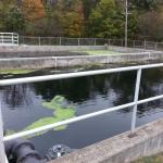 Concrete Polishing Pond Basins